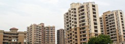 sector45 right property in Gurgaon